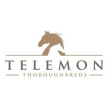 Telemon Thoroughbreds